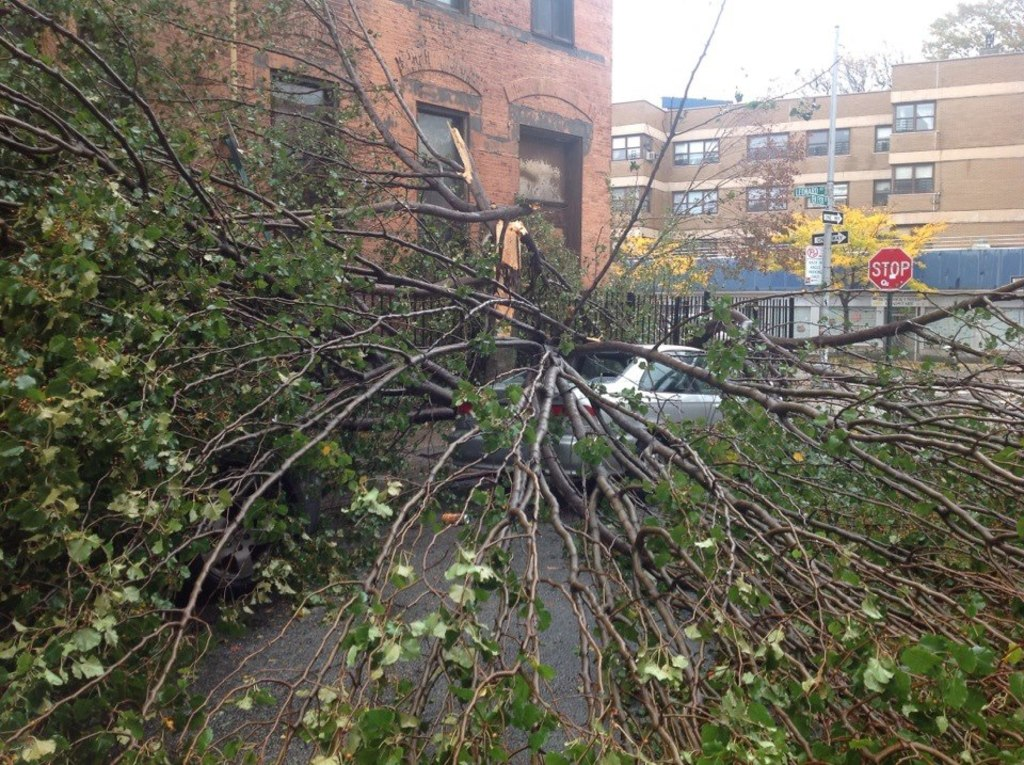 HurricaneSandy_10.2012_Brooklyn_Williamsburg
