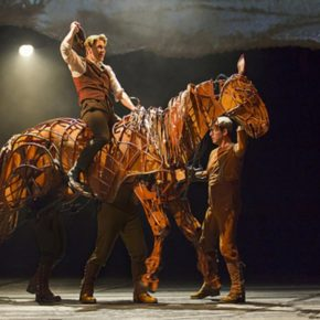 War Horse: An Interview with Andrew Veenstra