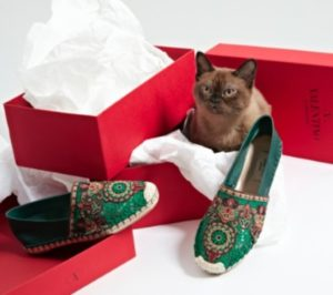 "courtesy of vogue.com's ""31 Days of Cats and Flats"""