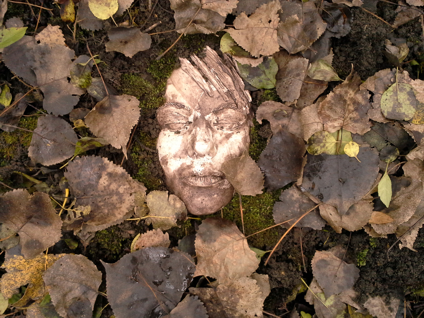 A face peeks out of the foliage in The Winterbourne Woods. Image courtesy of The Impossible Winterbourne.