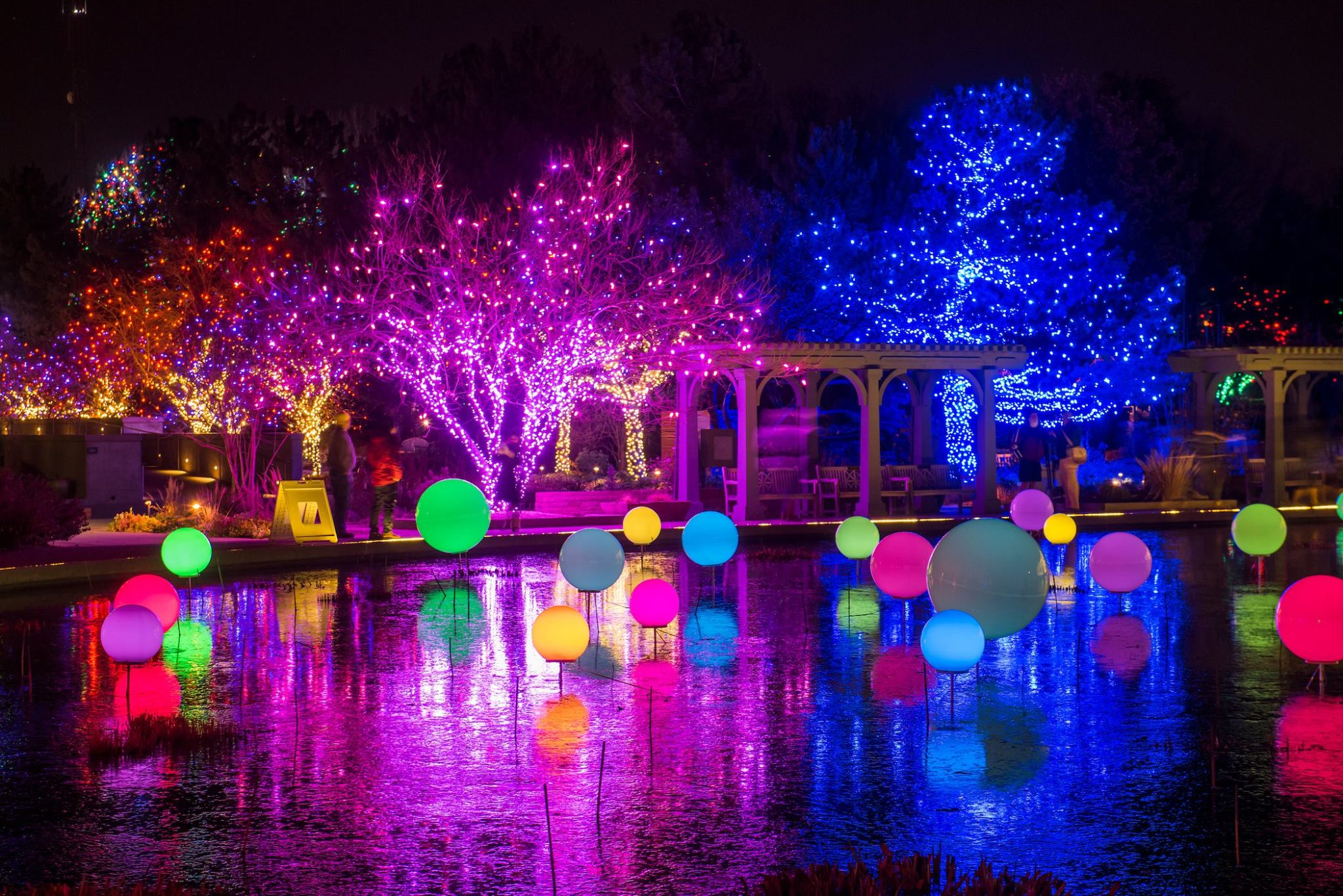 Blossoms of light and 18 things to do in denver this week 303 magazine for Denver botanic gardens concerts 2017