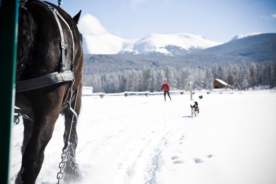 Skijoring, Devil's Thumb Ranch